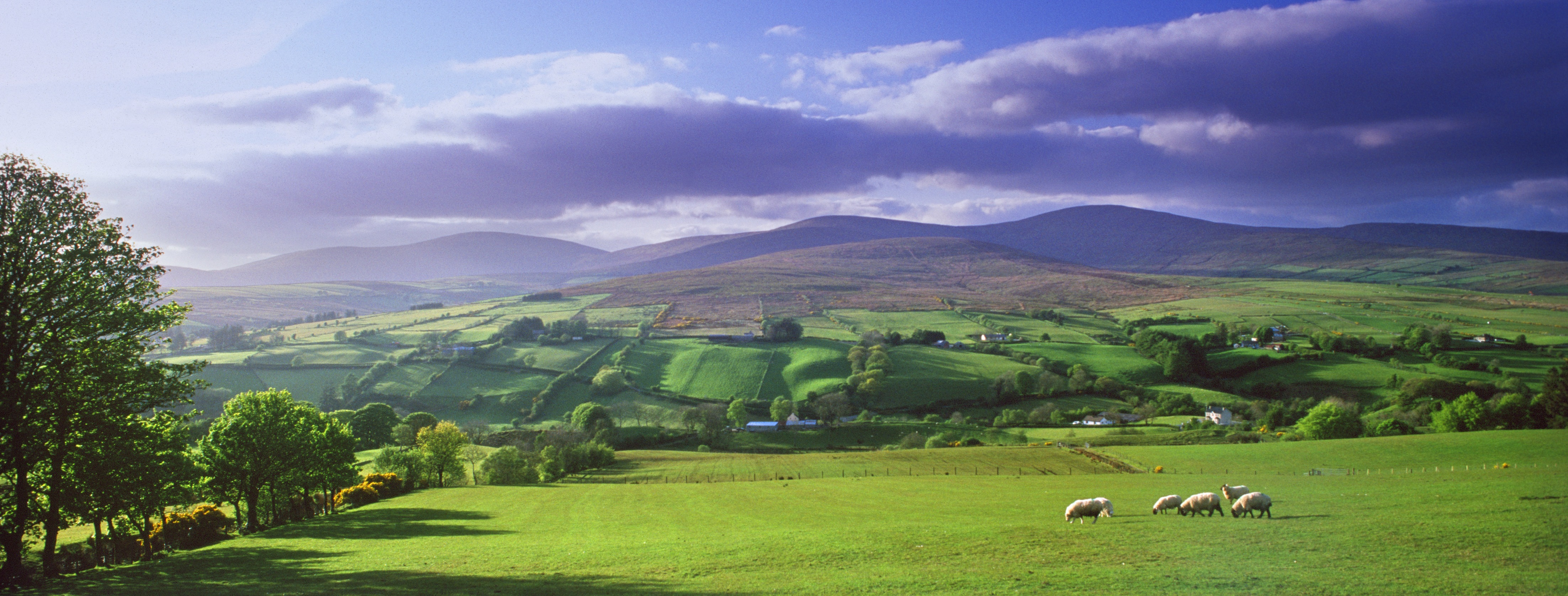 Area Of Natural Beauty Northern Ireland